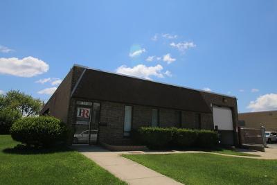 Schaumburg Commercial For Sale: 613 Estes Avenue