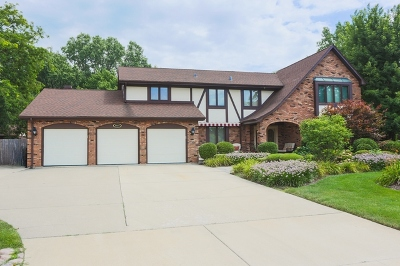 Palos Heights, Palos Hills Single Family Home For Sale: 6025 West 130th Place