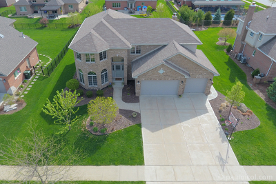 Mokena Single Family Home Contingent: 21429 Foxtail Drive