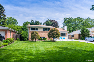 Wilmette Single Family Home For Sale: 2204 Old Glenview Road