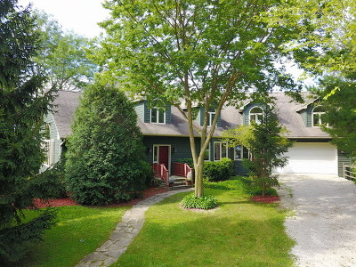 Antioch Single Family Home For Sale: 42360 North Crawford Road