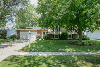 Wheaton Single Family Home For Sale: 1351 Brentwood Lane