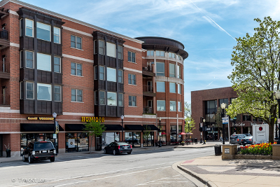 Downers Grove Condo/Townhouse For Sale: 945 Burlington Avenue #214