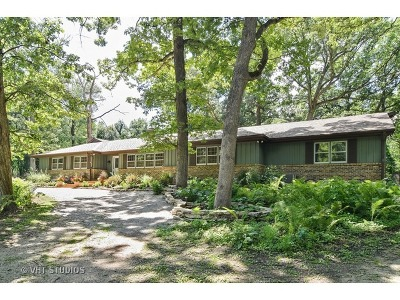 St. Charles Single Family Home For Sale: 6n210 Knollwood Drive