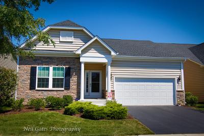 Aurora Single Family Home For Sale: 1604 Colchester Lane