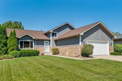 Bartlett Single Family Home For Sale: 866 Brewster Lane