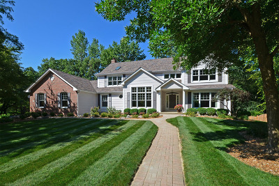 Lake Zurich Single Family Home For Sale: 549 Lions Drive