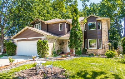 Palatine Single Family Home For Sale: 2369 North Irene Drive