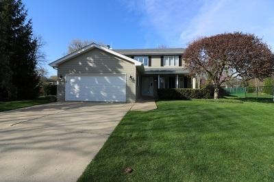 Lake Zurich Single Family Home For Sale: 1068 Wilmette Terrace