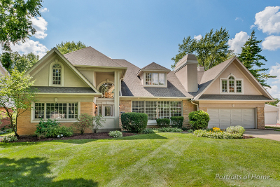 Glen Ellyn Single Family Home For Sale: 250 North Park Boulevard