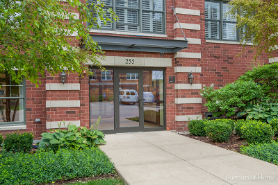 Wheaton Condo/Townhouse Contingent: 255 East Liberty Drive #608-2