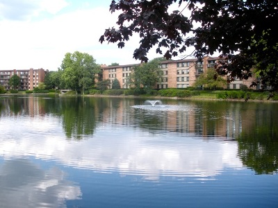 Willowbrook Condo/Townhouse Contingent: 301 Lake Hinsdale Drive #111