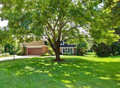 Barrington Single Family Home For Sale: 250 Fox Hunt Trail