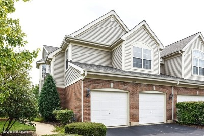 Lisle Condo/Townhouse Re-activated: 1775 Briggs Court