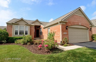 Orland Park Single Family Home For Sale: 13300 Lahinch Drive