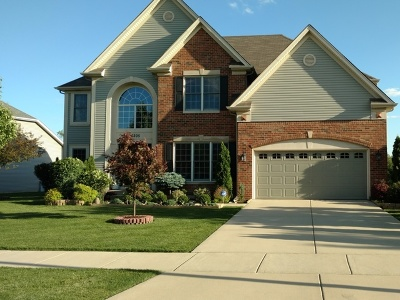 Plainfield Single Family Home For Sale: 26205 West Milestone Drive