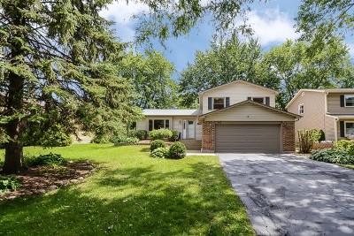 Bartlett IL Single Family Home Contingent: $249,900