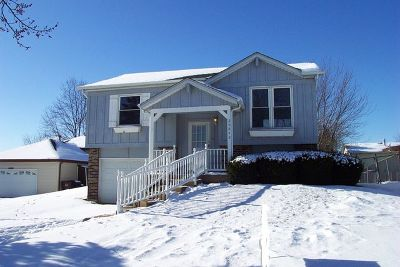 Frankfort Single Family Home Contingent: 20842 South Hickory Creek Place