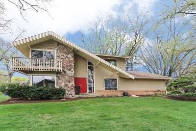 Maplebrook Single Family Home For Sale: 1137 Sandpiper Lane
