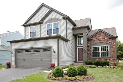 Bartlett IL Single Family Home Contingent: $289,900