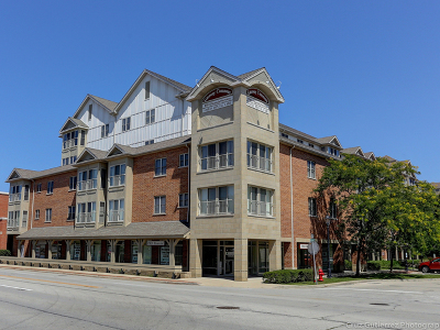Roselle Condo/Townhouse For Sale: 50 North Bokelman Street #536