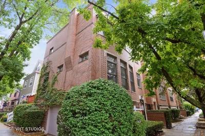 Single Family Home For Sale: 3059 North Paulina Street