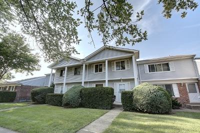 Bolingbrook Condo/Townhouse For Sale: 149 Jamestown Lane
