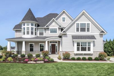 Plainfield Single Family Home For Sale: 12154 South Sinclair Drive