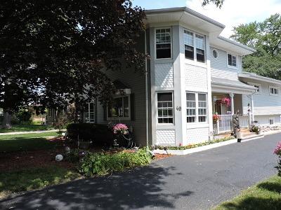 Palatine Single Family Home For Sale: 49 South Greenwood Avenue