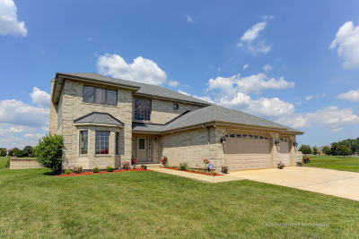 Tinley Park Single Family Home For Sale: 17530 Webster Court