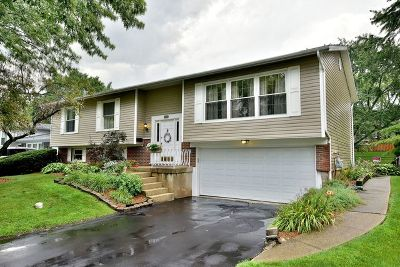 Hanover Park Single Family Home Contingent: 7605 Northway Drive