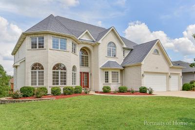 Plainfield Single Family Home For Sale: 12801 Barrow Lane