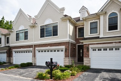 Palatine Condo/Townhouse For Sale: 913 South Plum Grove Road