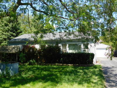 Lake Zurich Single Family Home For Sale: 21388 West Highland Drive