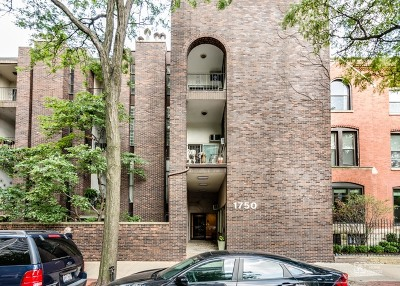 Cook County Condo/Townhouse For Sale: 1750 North Wells Street #106