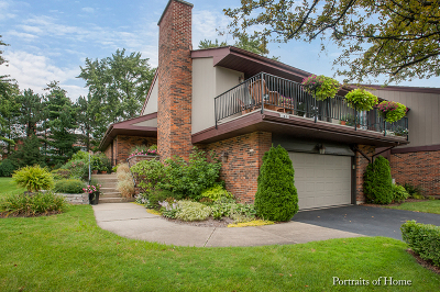 Oak Brook Condo/Townhouse For Sale: 183 Briarwood Loop