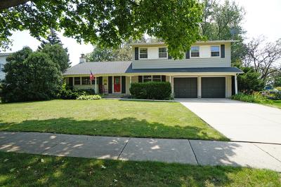 Palatine Single Family Home For Sale: 159 South Arlene Avenue