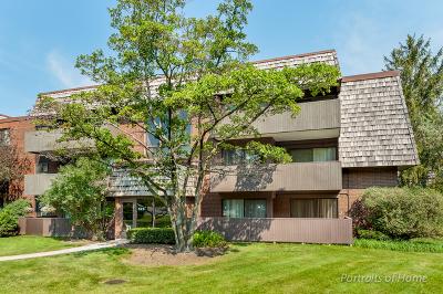 Carol Stream Condo/Townhouse Contingent: 523 Timber Ridge Drive #202-A