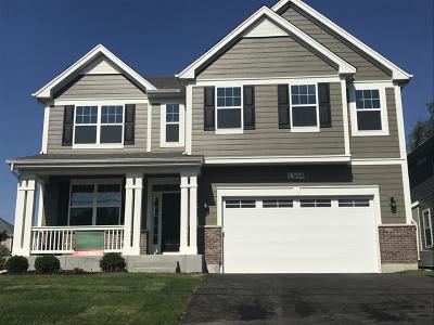 Palatine Single Family Home For Sale: 1304 North Palos Avenue