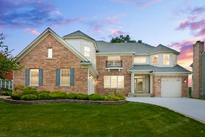 Schaumburg Single Family Home For Sale: 432 Birmingham Lane