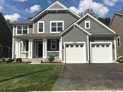 Palatine Single Family Home For Sale: 1310 North Palos Avenue