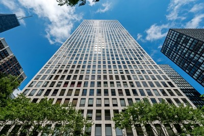 Chicago Condo/Townhouse For Sale: 260 East Chestnut Street #810