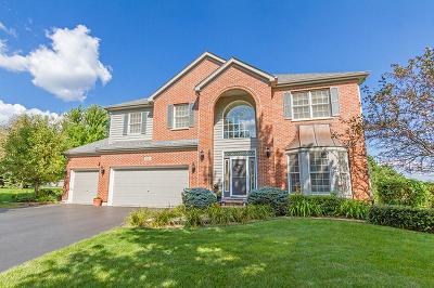 Crystal Lake Single Family Home For Sale: 3514 Oakleaf Lane