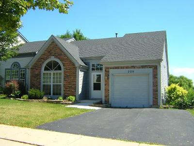 Mundelein Condo/Townhouse For Sale: 209 Bingham Circle #209