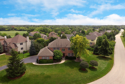 Hawthorn Woods Single Family Home For Sale: 42 Park View Lane