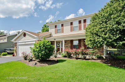 Algonquin Single Family Home For Sale: 1340 Powder Horn Drive