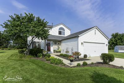 McHenry Single Family Home For Sale: 6020 Jordan Court