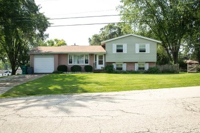 Johnsburg Single Family Home For Sale: 2413 Saint Francis Avenue