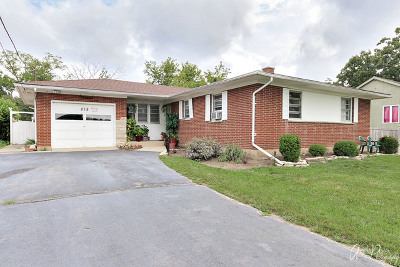 Round Lake Single Family Home For Sale: 818 West Nippersink Road