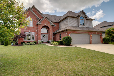 Plainfield Single Family Home Re-activated: 25745 Meadowland Circle